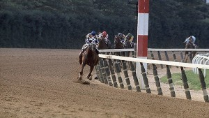 Secretariat 1973 Preakness Stakes Winner