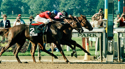 Photo of Highlights Of Triple Crown Rivalry Between Affirmed VS Alydar – The Greatest Rivalry In Horse Racing