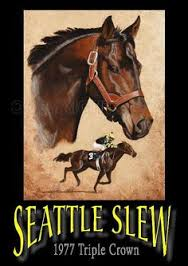 Photo of Horse Racing Highlights Of 1977 Triple Crown Winner Seattle Slew Career