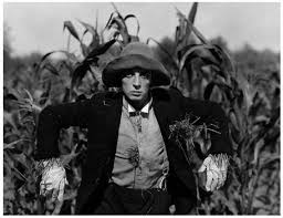 Photo of Comedy – Buster Keaton – The General Store & The Scarecrow & The Athlete