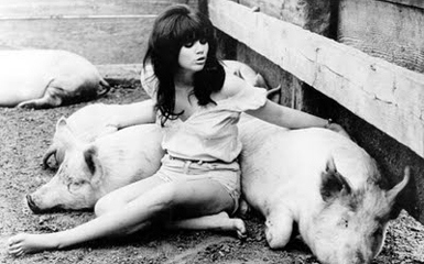Photo of Linda Ronstadt Live – Just One Look & Look Out For My Love & Mad Mad Love