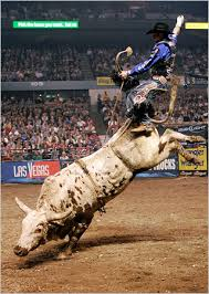 Photo of Rodeo – 1986 Calgary Stampede and Rodeo Bull Riding Competition