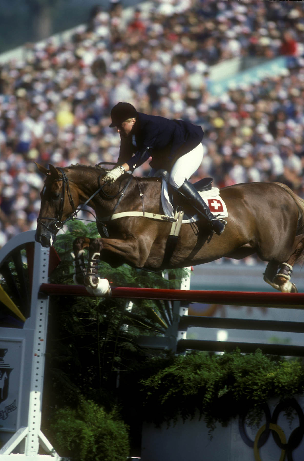 Photo of Olympics – 1984 Los Angeles – Equestrian – Show Jumping – 3 Horse Jump-Off For Bronze