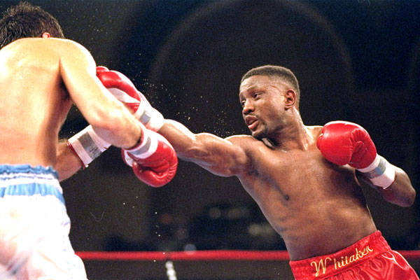 Photo of Boxing – Lightweight Bout – Pernell Sweet Pea Whitaker vs Eddie Hatfield