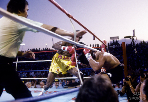 Photo of Boxing – WBC Light Middleweight Title – Champ Thomas Hearns VS Roberto Duran