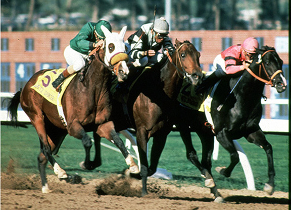 Photo of Horse Racing – 1984 – 1st Running Of The Breeders Cup – Host Dick Enberg & Guest Liz Taylor