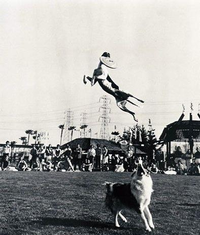 Photo of Frisbee – 1979 – World Frisbee Disc Championships – Human + Canine Competitions – Rose Bowl