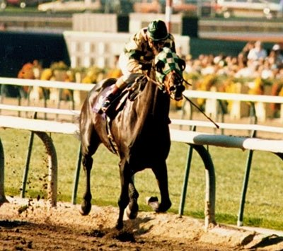 Photo of Horse Racing – 1986 – The Breeders Cup – Santa Anita Park Racetrack – With Dick Enberg