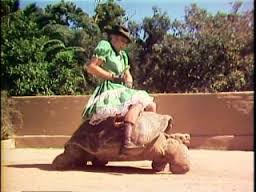 Photo of Comedy – 1985 – Skit – Steve Martin + Strother Martin In The Turtle Bronc Rider