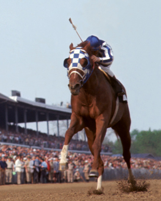 Photo of Horse Racing – 1988 – Special – Daughter Of Secretariat Tragic Death – Story of Sacs Golden Summer