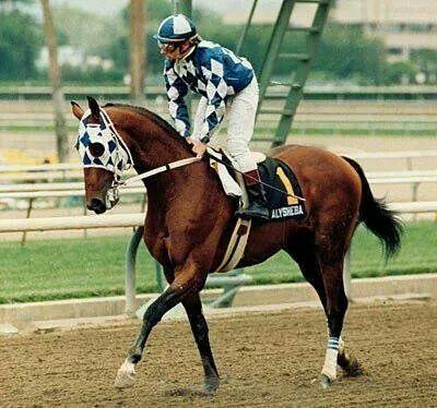 Photo of Horse Racing – 1987 – Preakness Stakes – Jack Whitaker Profiles Alysheba Jockey Chris McCarron