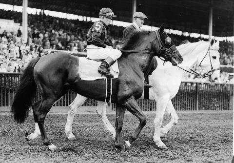 Photo of Horse Racing – 1941 – Highlights Of Triple Crown Winner Whirlaway – Ridden By Eddie Arcaro