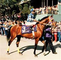 Photo of Horse Racing – 1987 – Belmont Stakes – History & Highlights Of Alysheba As He Goes For Triple Crown