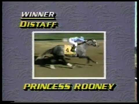 Photo of Horse Racing – 1984 – Breeders Cup – Review Of The Days Winners Race By Race – With Harvey Peck