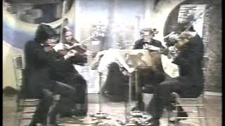 Photo of Music – 1983 – American String Quarter – Bartok Concerto For Orchestra – Played On Steve Martin Show